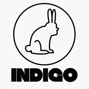 INDIGO_Revista